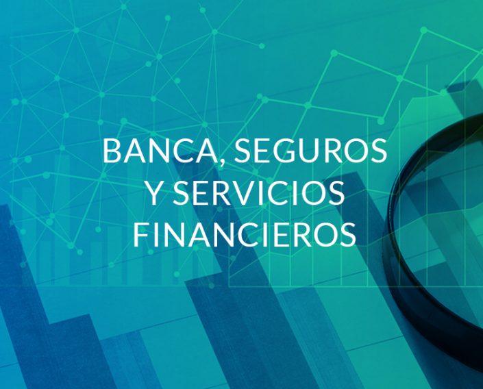 Banca, Seguros y Sevicios Financieros Quidgest