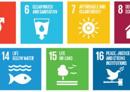 un Ssustainable development goals quidgest