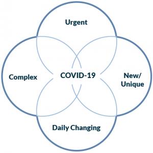 covid software development