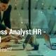 business analyst payroll hr